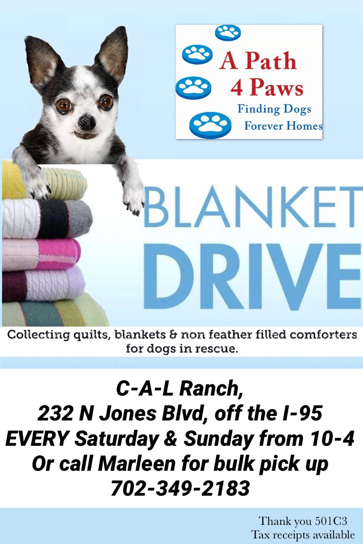 Blanket drive flyer