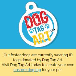 https-www-dogtagart-com-content-250x250